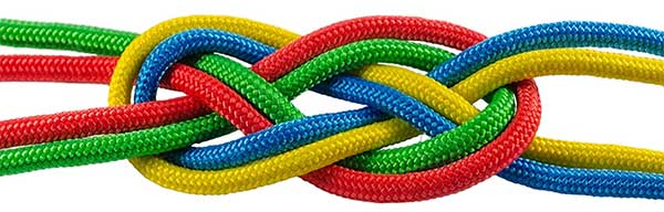 What is Paracord?