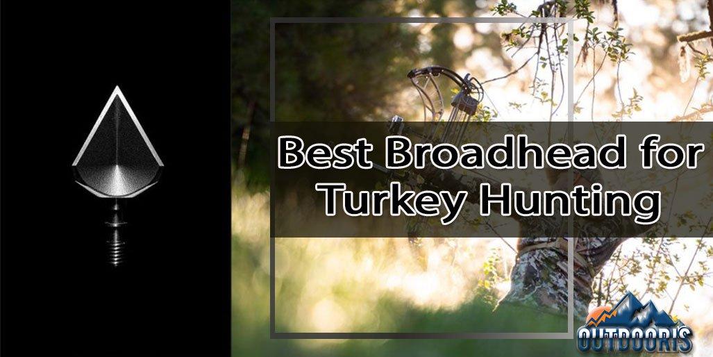Best Broadhead for Turkey Hunting