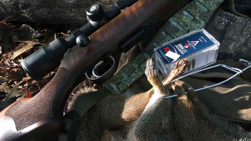 Guns for Squirrel