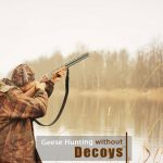 How to Hunt Geese Without Decoys