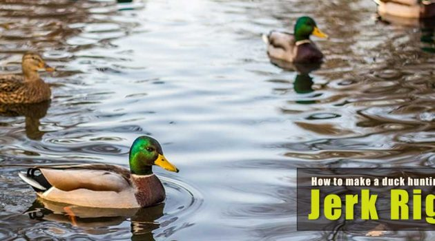 How to Make a Jerk Rig for Duck Hunting