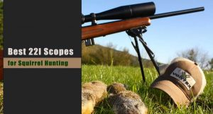 Best Scope for 22LR Squirrel Hunting